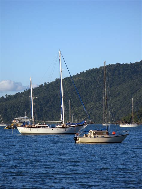 boat mooring airlie beach free stock photo 3407 muddy bay boat moorings freeimageslive