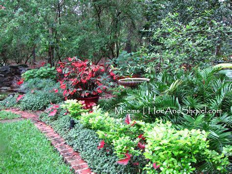 container gardening in florida hoe and shovel a florida moss garden