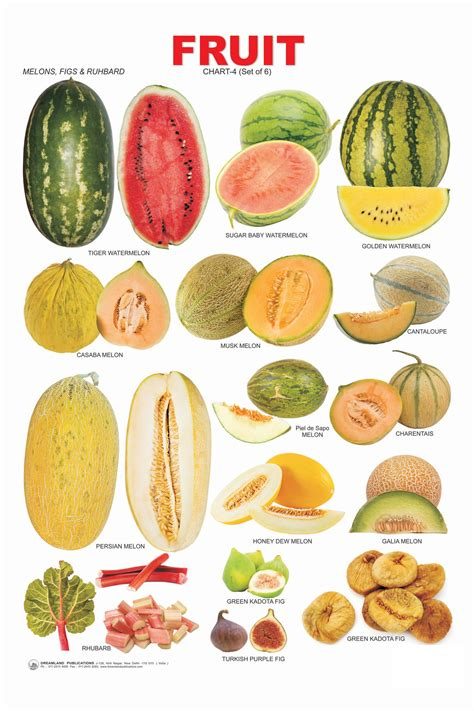 o fruits names the gallery for gt tropical fruits pictures and names