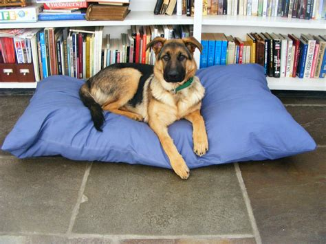 how to make a dog pillow bed easy to make floor pillows and poufs for a cozy home