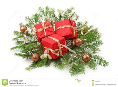 christmas tree bough stock photography image 5979752