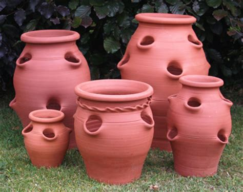 Large Terracotta Strawberry Planter by 5 Fantastic Pots For Your Organic Garden