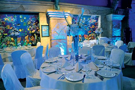 wedding reception new aquarium island and weddings atlantis banquets and events