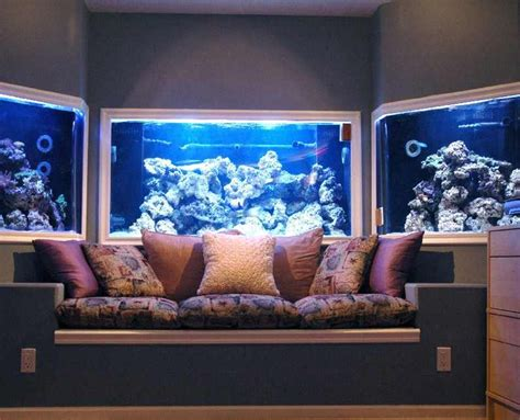 fish tank in wall amazing in wall fish tank 2017 fish wall aquarium this is in my dream home extravagant