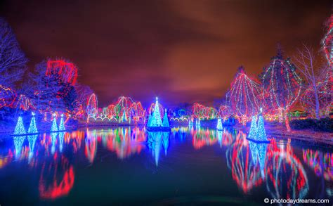 columbus zoo lights so you re stuck in columbus winter my fisher