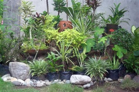 Gorgeous Small Rock Garden Designs Small Garden Rockery Ideas
