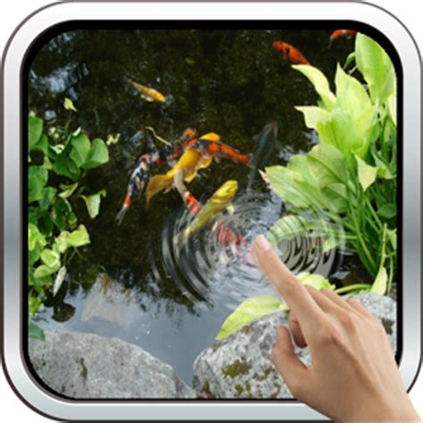 full version of koi live wallpaper koi free live wallpaper for pc free download