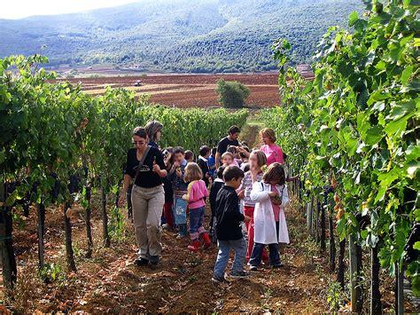 chianti monteriggioni vino chianti granja chianti siena monteriggioni il colombaio