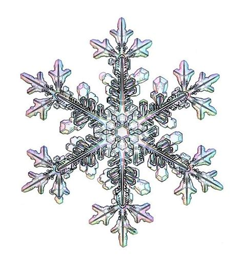 snowflake patterns real 1000 ideas about snowflake tattoos on pinterest small