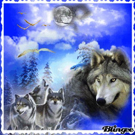 Imagenes Goticas De Lobos | lobos picture 119366674 blingee com