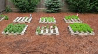 comment commencer un jardin bio