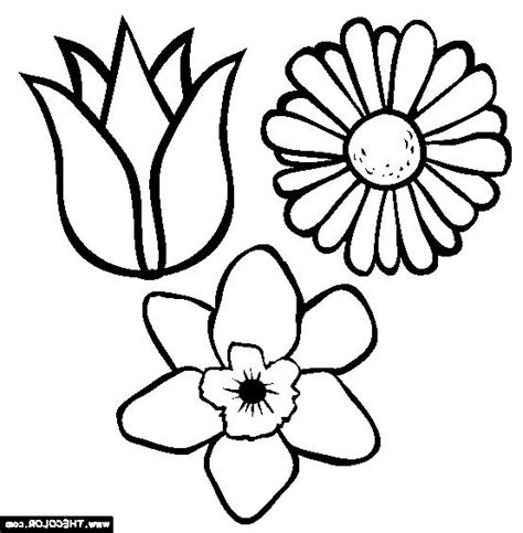 coloring pages of spring flowers flower photo color