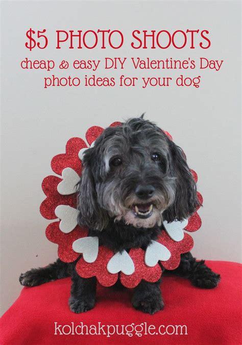 shoots easy diy valentines day dog