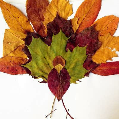 craft projects with leaves fall leaves arts and crafts find craft ideas