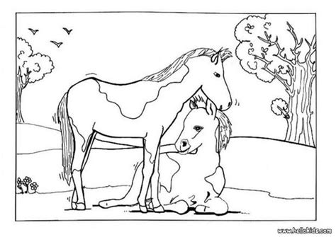 coloring pages of horses and foals foal and mare coloring pages hellokids