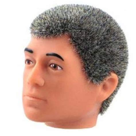 gray hair is fuzzy cotswold collectibles captaincosmos fr
