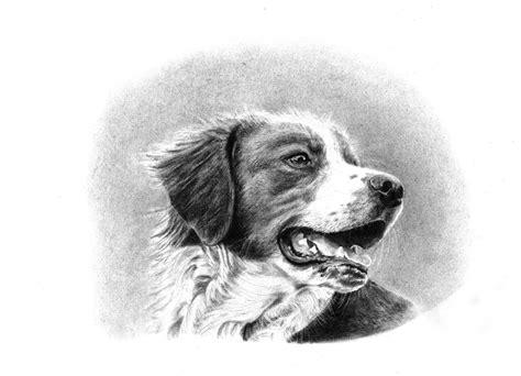 imagenes para dibujar a lapiz carboncillo dibujos carboncillo rafa pastor p 225 gina 2