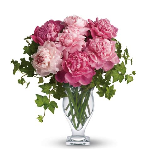 peonies in season november wedding flowers ideas
