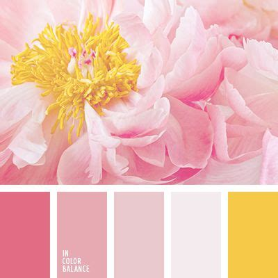 pink color combinations best 25 pink color combination ideas only on pinterest
