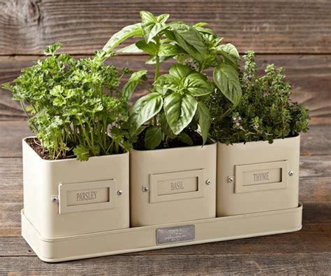 kitchen herb garden containers customizable herb labels and tray charming planters for