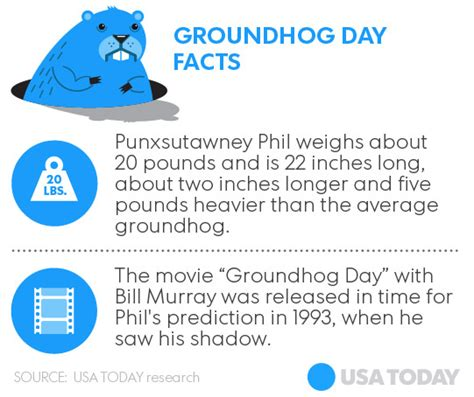 groundhog day expression meaning wbir groundhog day 2016 no shadow means early
