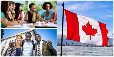 Cheapest Universities In Canada For International Students For Mba by Do You Want To Study In Canada 22 Cheapest Universities