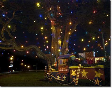 when is the tree lighting in san francisco tree lighting in golden gate park dec 8