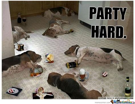 Party Animal Meme - dog s night out by sanzor meme center