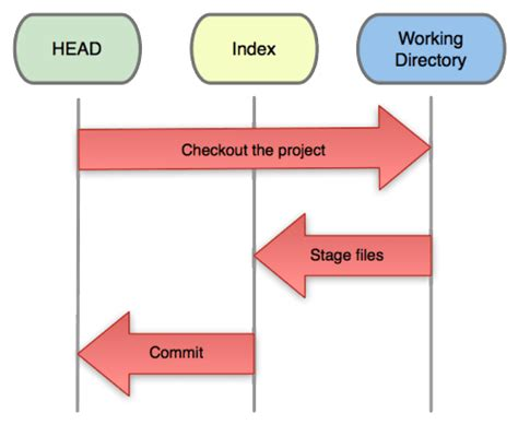 git tutorial head git tutorial