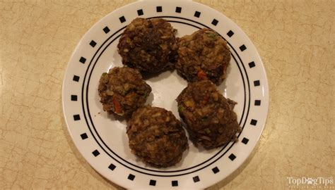 can dogs eat ground beef ground beef food recipe and