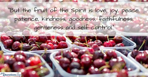 8 fruits of the holy spirit what is the fruit of the holy spirit