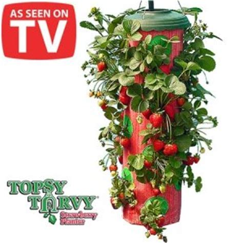 Topsy Turvy Strawberry Planter Reviews by New As Seen On Tv Topsy Turvy Strawberry