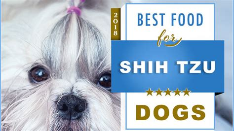 shih tzu puppy food recipes top 6 recommended best foods for a shih tzu