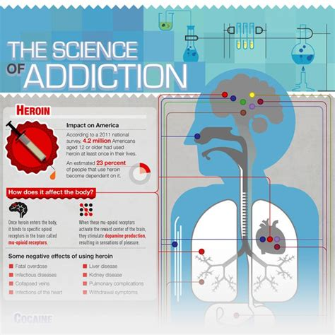 Detox Your Brain Psychology by 17 Best Images About Science Of Addiction On