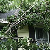 does house insurance cover fence damage does car insurance cover tree damage allstate