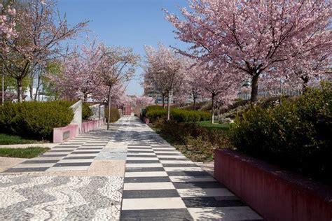 giardino dei pensieri il giardino dei pensieri attualit 224 d la repubblica