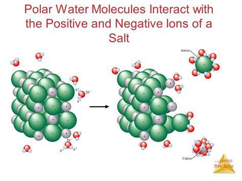 salt l negative ions chapter 4 aqueous reactions and solution stoichiometry