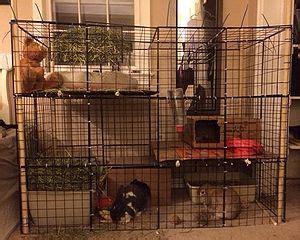 housing wabbitwiki