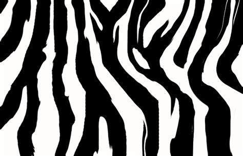 zebra pattern wall zebra wallpaper the animal life