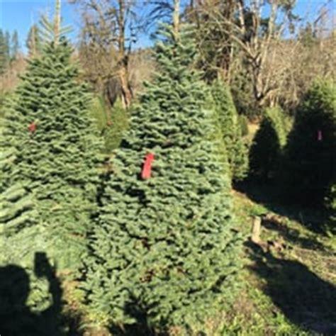 enchanted winds christmas tree farm christmas trees