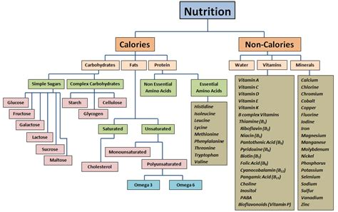 nutrition diagram what is a calorie why does it matter
