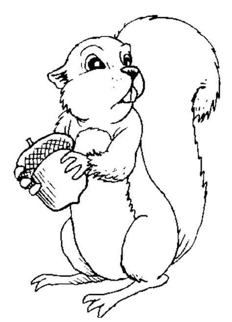 Squirrel Color Page   AZ Coloring Pages