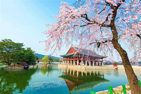 imagenes de korea japon experiencia erasmus en se 250 l corea del sur de paula