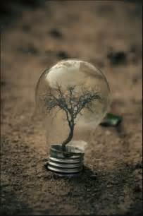 light bulbs for photography surreal photography by adrian limani