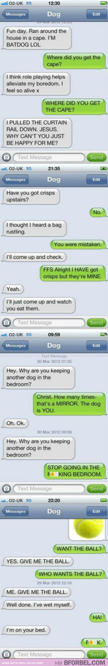 if dogs could text if your could text he would probably send you these b for bel
