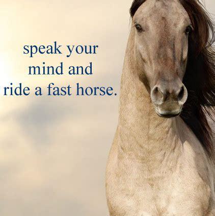 horse images  whatsapp dp profile  quotes slogan