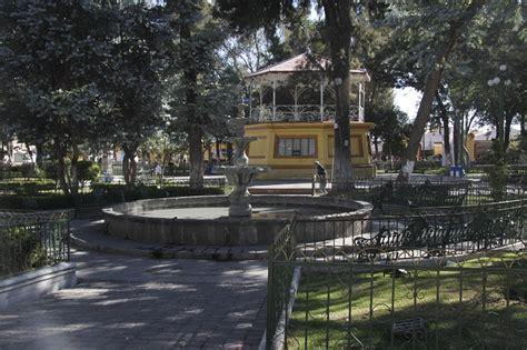 imagenes de libres puebla fallece cesino atacado por abejas en el municipio de