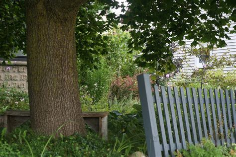 overgrown garden overgrown garden free stock photo domain pictures