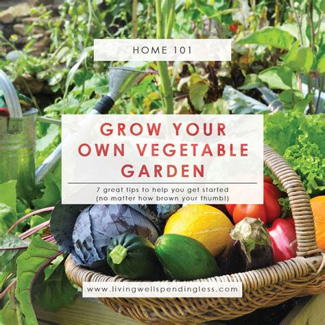 How To Grow A Vegetable Garden Gardening Tips For Brown Growing Your Own Vegetable Garden