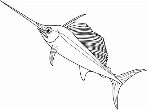 sailfish coloring pages image gallery swordfish drawing